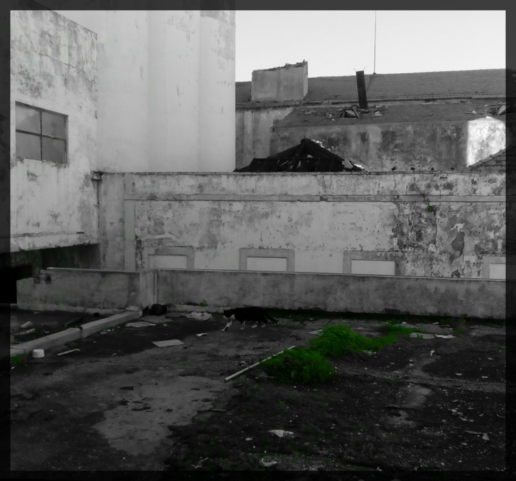 HOME 5.Faro.Portugal.2015